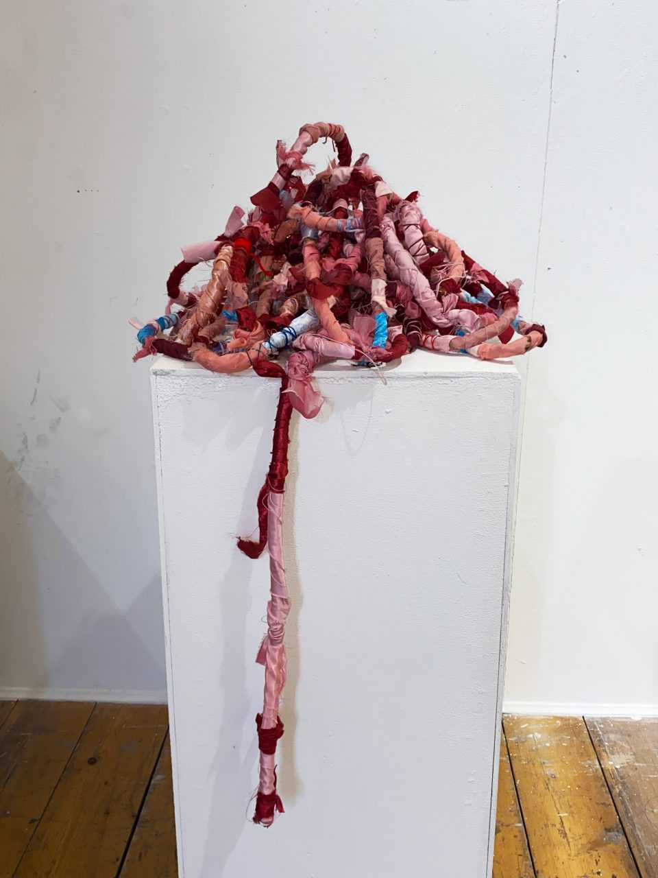 Untitled from 'The cord of connection to the Divine Mother' Series May 2021. Colour photograph of installation (rope and fabric)
